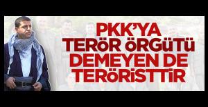 PKKya terör örgütü demeyen de...