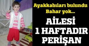 2,5 yaşındaki Bahar'dan 1 haftadır haber yok
