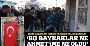 Afyonkarahisar'a Uzman Çavuş Ahmet Şahin'in ateşi düştü
