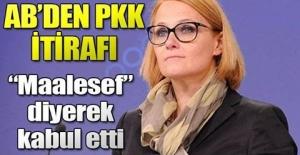 Avrupa Birliği'nden PKK itirafı! 'Maalesef hala...'