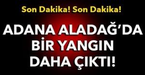 Son Dakika! Son Dakika! Adana Aladağ'da bir yangın daha!