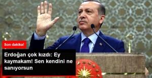 Cumhurbaşkanı Erdoğan Çok Kızdı: Ey Kaymakam Sen Kendini Ne Sanıyorsun