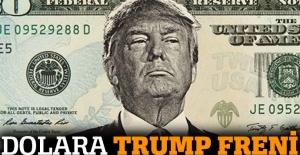 Dolara Trump freni