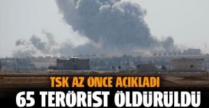 Fırat Kalkanı Harekatı'nda 65 terörist öldürüldü