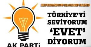 Türkiye'yi seviyorum 'Evet' diyorum