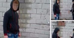 Yavru köpeğe işkencede 2 kişi serbest bırakıldı