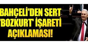 Bahçeli'den 'Bozkurt' işareti açıklaması