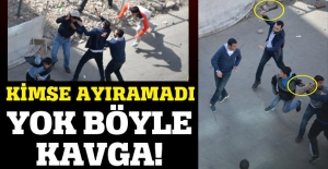 Diyarbakır'da büyük kavga! Pitbull, taş, sopa, satır...