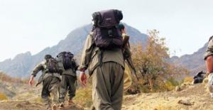 PKK, Münbiç'e terörist yığmaya başladı!