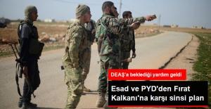 Rejim, Deaş'ı Fırat Kalkanı'ndan Koruyacak