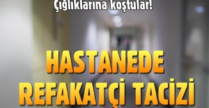 Samsun'da hastanedeki refakatçiye taciz şoku!