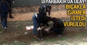 Diyarbakır'da Nevruz alanına bıçakla...