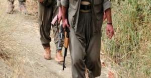 Mardin'de çatışma çıktı, 6 terörist öldürüldü