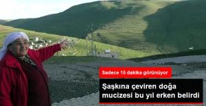 Ardahan'daki Atatürk Silüeti Bu Yıl Erken Göründü
