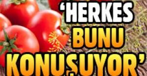 Bakan Çelik'ten domates çıkışı