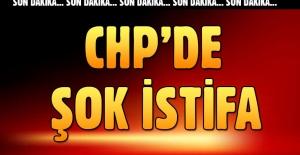 Selin Sayek Böke CHP'den istifa etti