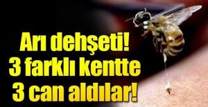 3 kişi arı sokmasından hayatını kaybetti!