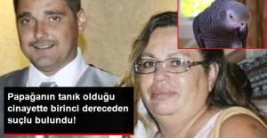 Papağanın Tanık Olduğu Olayda, Kocasını Öldüren Kadın Suçlu Bulundu