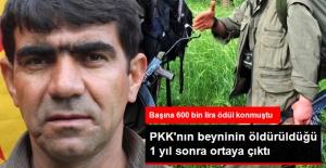 PKK'nın Beyni Olarak Gösterilen Fayık Güçlü, Bir Yıl Önce Öldürülmüş