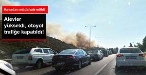 Makilik Alanda Yangın Çıktı, İzmir Çeşme Otobanı Trafiğe Kapatıldı!