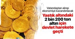 Hazine 2 bin tonluk altın için harekete geçti