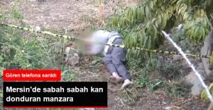 Mersin'de Evin Bahçesinde Erkek Cesedi Bulundu