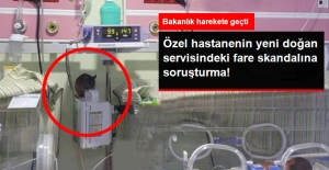 Sağlık Bakanlığı, Yeni Doğan Servisindeki Fare Skandalıyla İlgili Soruşturma Başlattı