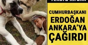 Paylaşım rekoru kırdı... Cumhurbaşkanı Erdoğan Ankara'ya davet etti