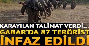 Talimatı Karayılan verdi! Gabar'da 87 terörist infaz edildi