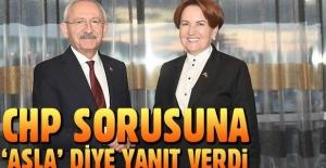 İYİ Parti Genel Başkanı Meral Akşener seçimde ittifak yapacak mı?