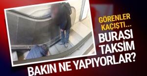 İstanbul'un göbeğinde bonzai alemi! Görenler kaçıştı...