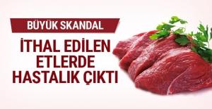 Büyük skandal! Bosna'dan ithal edilen etlerde hastalık çıktı!!!