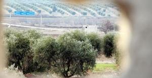 Kaçacak delik arıyorlar! PKK'dan şok talimat