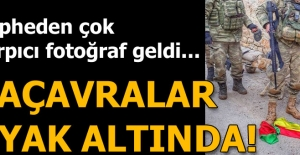 Son dakika: Azez'den Afrin'e operasyon başlatıldı! Örgütün paçavraları yere indirildi