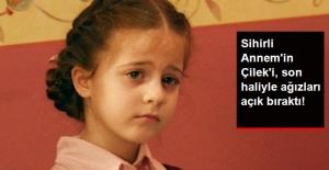 Sihirli Annem#039;in Çilek#039;i...