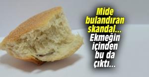 Mide bulandıran skandal... Ekmeğin içinden bu da çıktı...