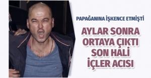 Papağana işkence etmişti! MasterChef Murat Özdemir in son hali içler acısı