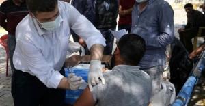Sağlık Bakanı Fahrettin Koca Türkiye'de ilk doz aşı yaptırman kişi sayısını açıkladı