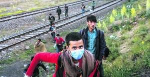 Afganistan'da sınırların kapatılmasıyla Türkiye'ye göç büyük ölçüde durdu