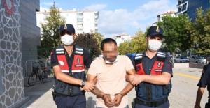 Aksaray'da suç üstü yakalandı! Arı kovanından çıktı: Sözleri pes dedirtti