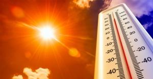 Dünya Meteoroloji Örgütünden küresel ısınma uyarısı