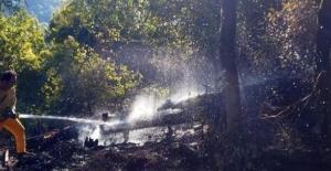Muğla'da 3 günde yıldırım düşmesi sonucu 37 yangın çıktı!