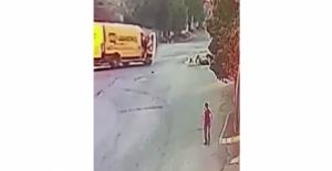 Esenyurt'ta köpek dehşeti kamerada: 2 yaralı