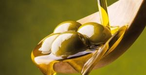 Sızma zeytinyağına yüzde 35 zam geldi! Fiyatı 35 TL'ye çıktı