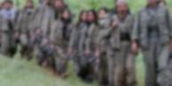 """""""300 PKK'lı kurşuna dizildi"""""""