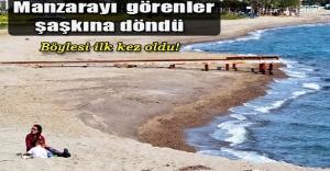 Bodrum'da deniz suyu çekildi