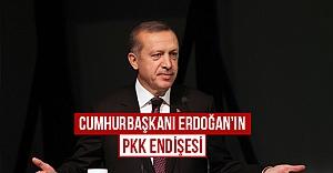 Cumhurbaşkanı Erdoğan'ın 'PKK' endişesi