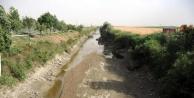 İç Anadolu'da Kuraklık Tarımı Vurdu