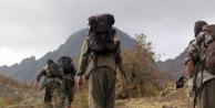 Kars'ta PKK'ya ağır darbe!
