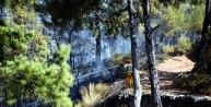 Milas'ta Korkutan Yangın (3)